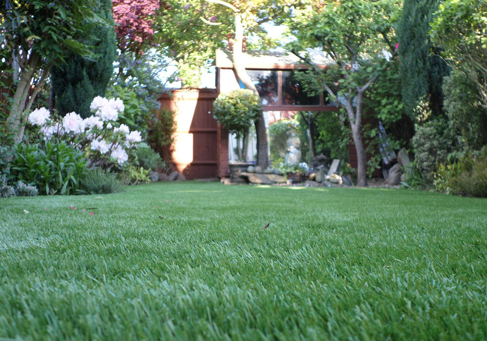 How to choose the best artificial grass for your lawn for Best grass for landscaping
