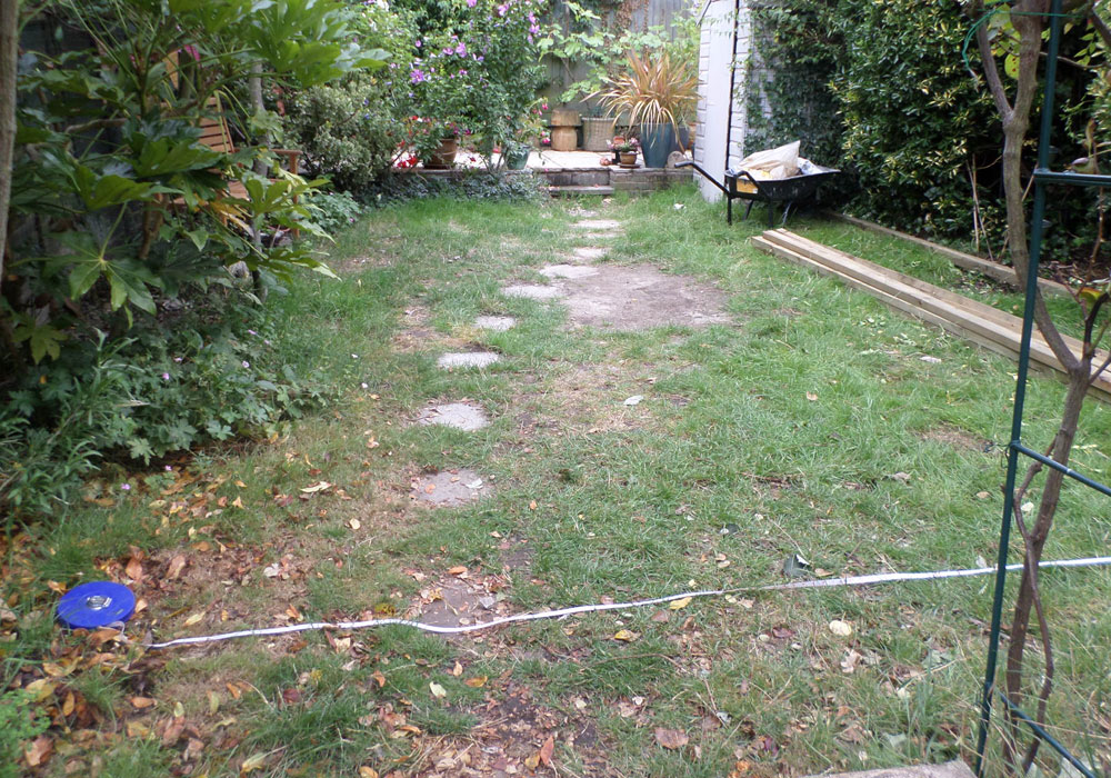 Back Garden Lawn Before