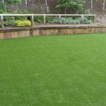 Lewisham School Garden