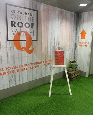Artificial grass at on the roof with q