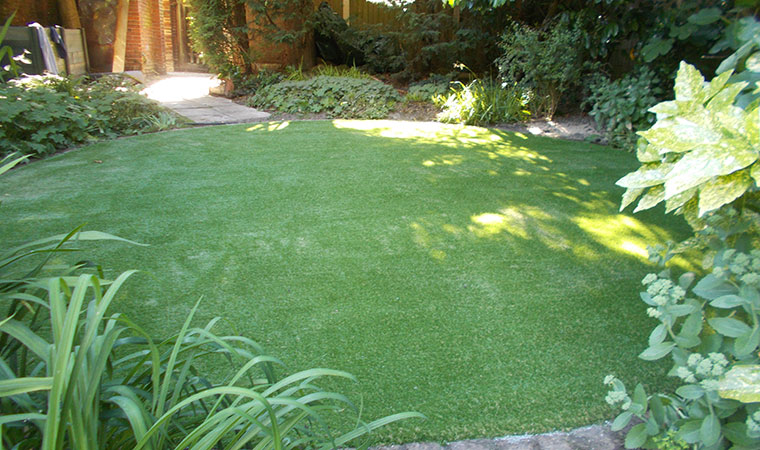 Shady Garden Area Shady Area Grass Alternative. Shady_garden_area.  Shady_area_grass_alternative