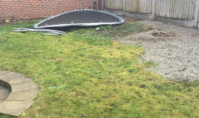 Scruffy garden lawn