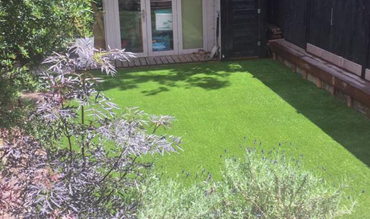 Typical lawn transformation