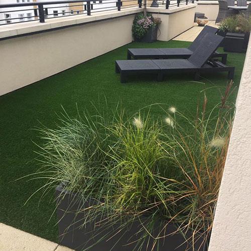 Grassed sunny area