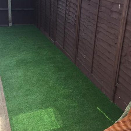 Dogs And Artificial Grass Reviews