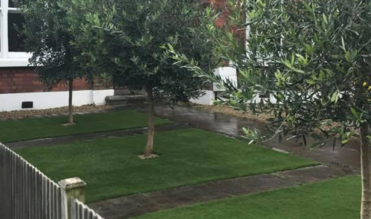 Fitted artificial grass in Ladywell