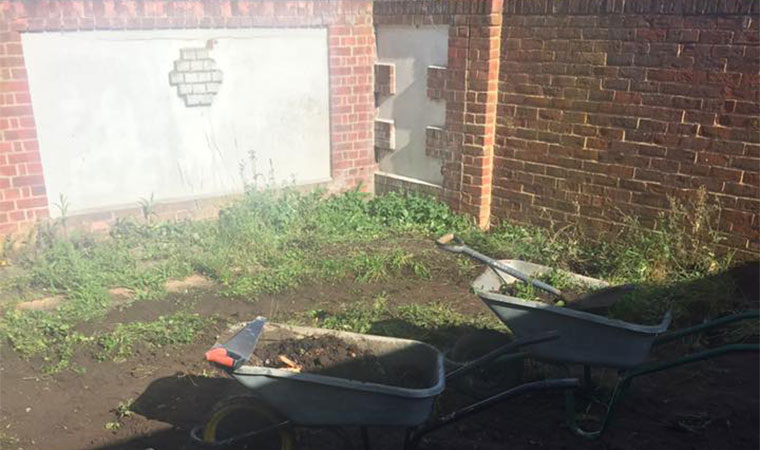 Making the garden low maintenance