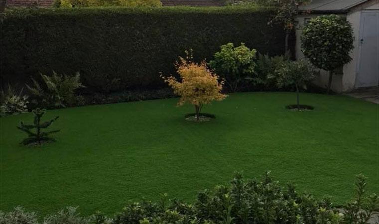 Easy maintenance garden lawn