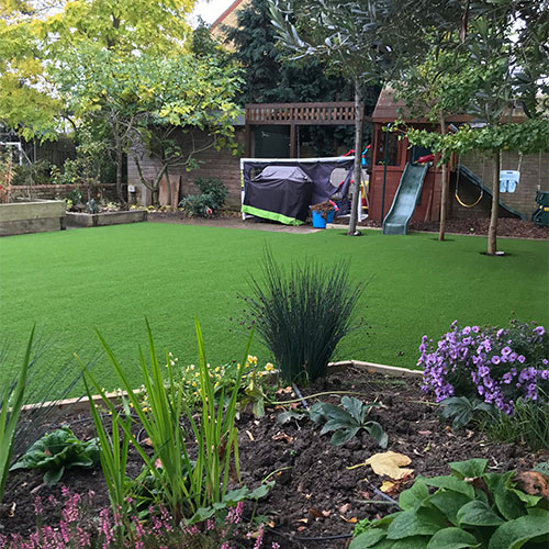 Great looking back garden lawn