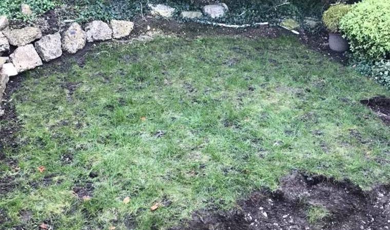 fitting artificial grass in selsdon