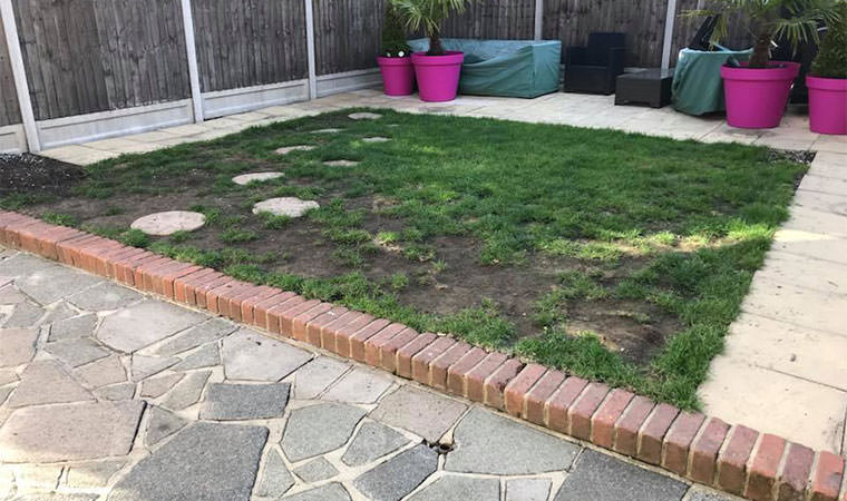 Time consuming garden lawn