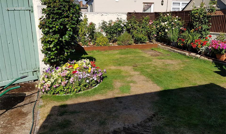 Tired looking garden lawn Plumstead