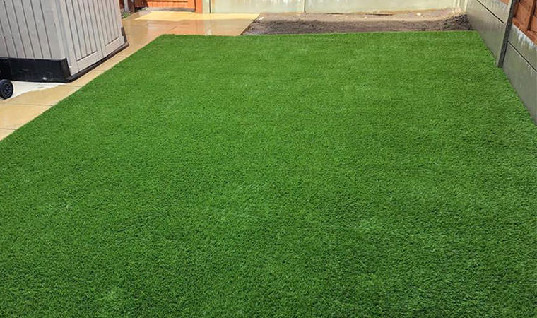 Dartford lawn sorted