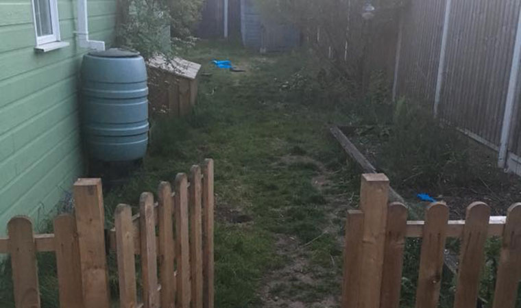 Messy lawn Grays