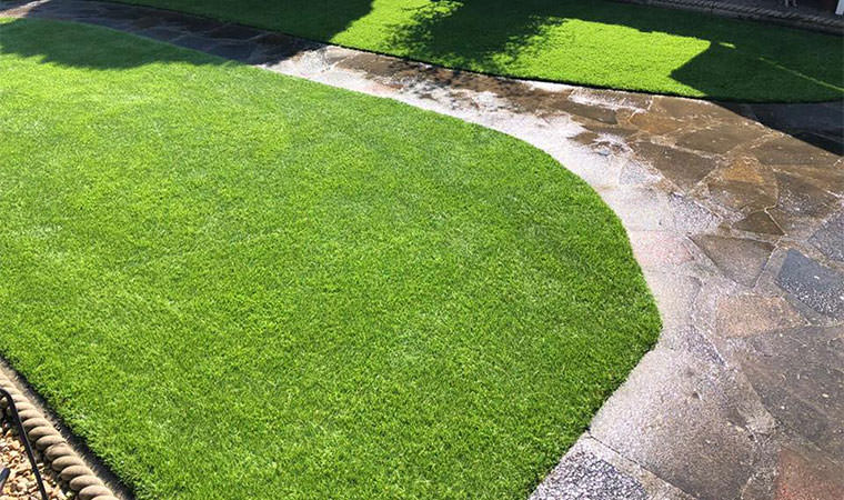 Revitalised lawn