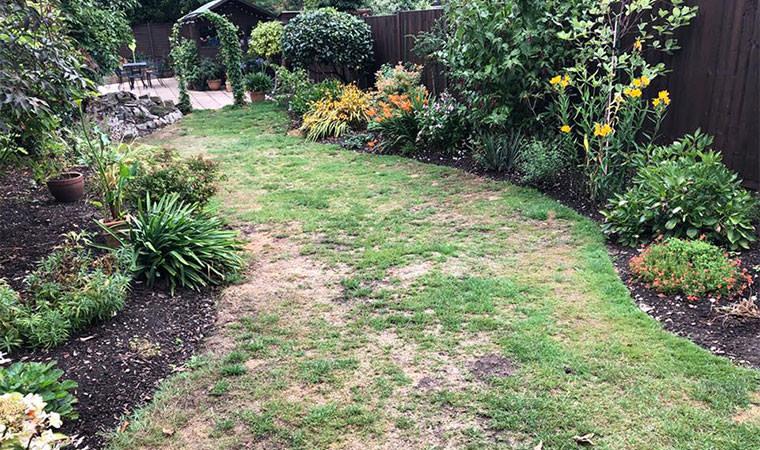 Original curved lawn