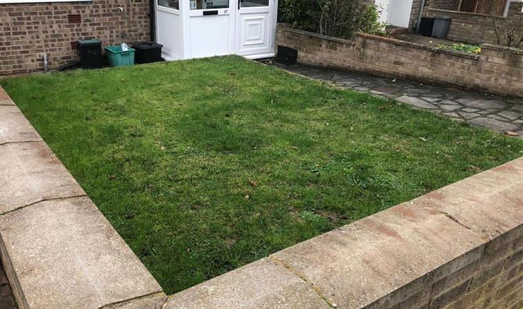 Lawn in Beckenham
