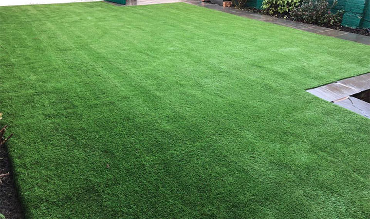 Mud free lawn Bromley