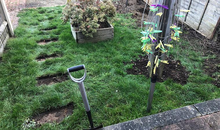 Scruffy lawn Maidstone