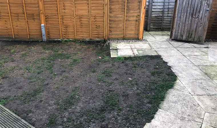 Dug up lawn Bromley