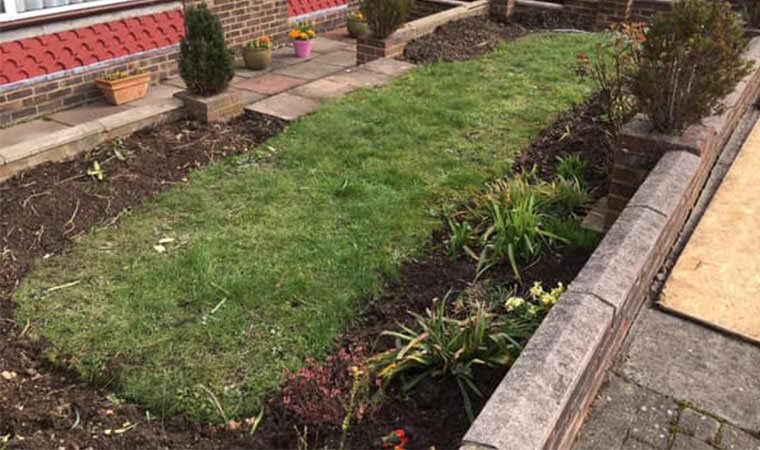 Front garden lawn Beckenham