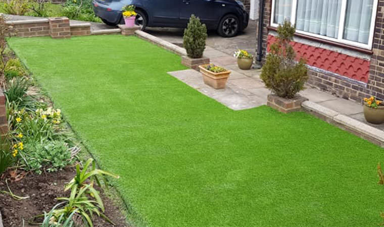 Front lawn with new heath grass