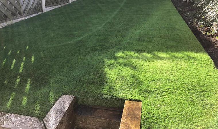 Revamped garden lawn