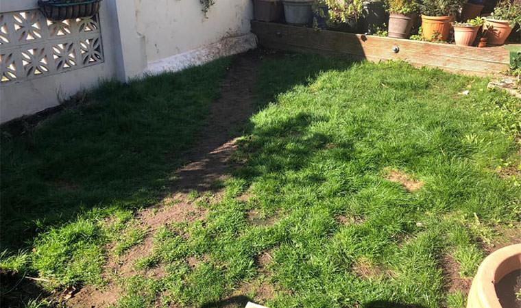 Existing back garden Erith