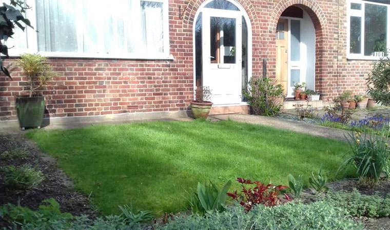 Existing lawn Sydenham