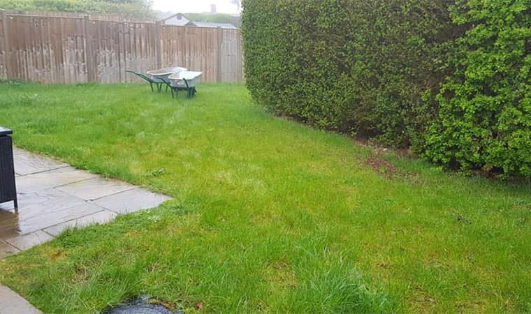 Existing lawn Warlingham