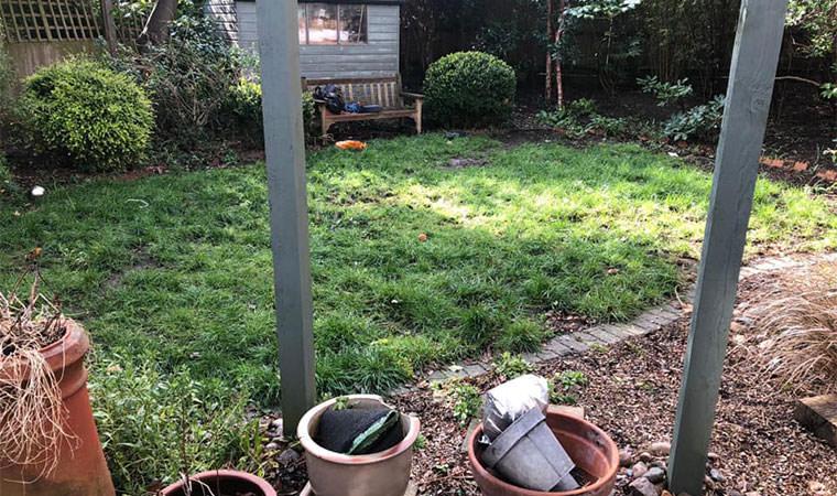 Grass Bromley