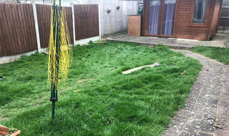Rough Sidcup lawn