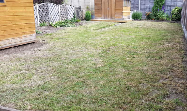 Existing grass lawn Welling