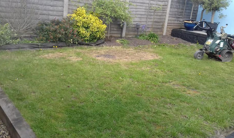 Existing lawn in Abbeywood
