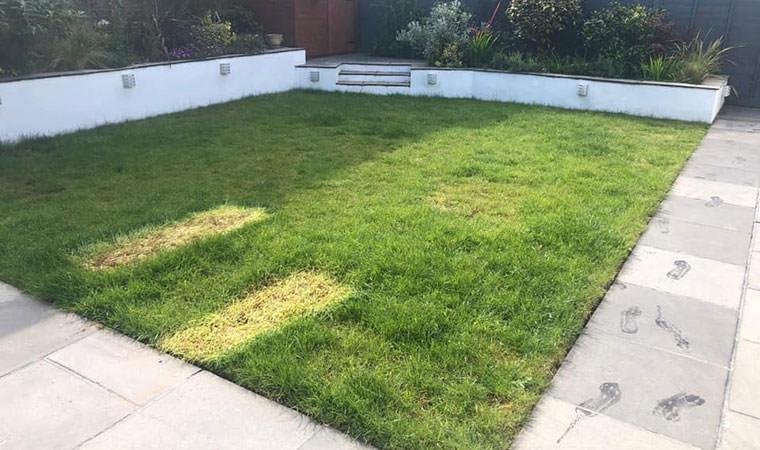 Modern garden Bexley