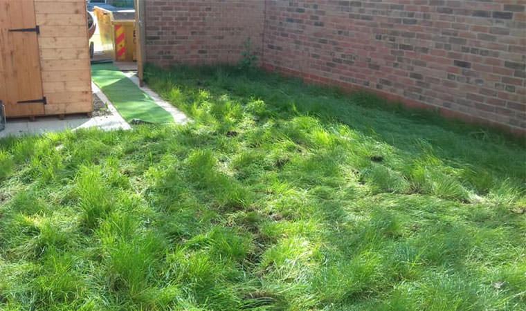 New build lawn Orpington