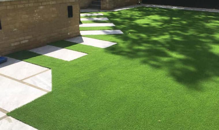 Great new lawn Chislehurst
