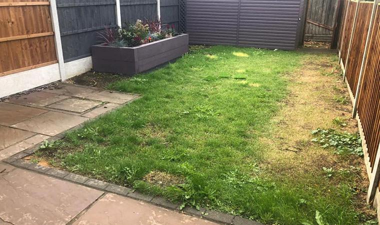 Basildon back garden