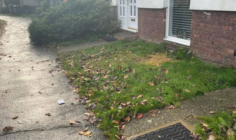 Scruffy front garden