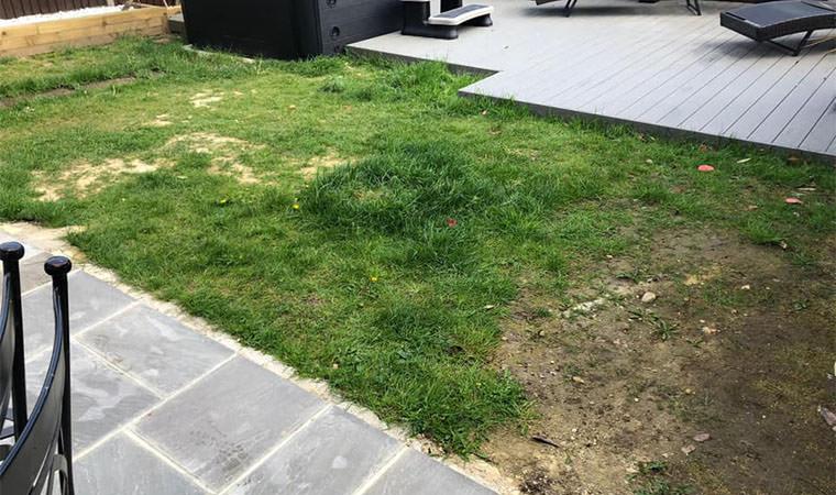 Northfleet garden lawn before