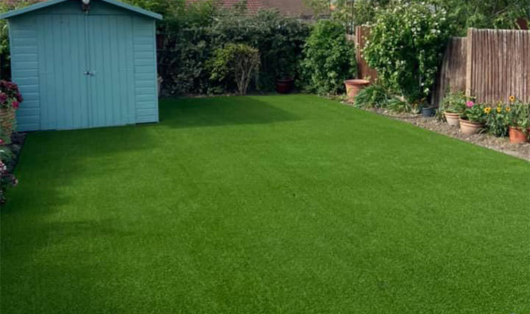 Lawn fit for Spaniel