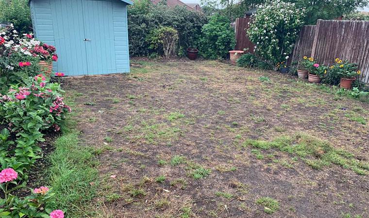 Muddy lawn Bexleyheath