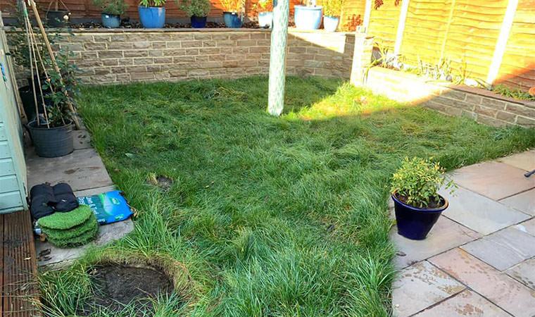 Small garden in Maidstone