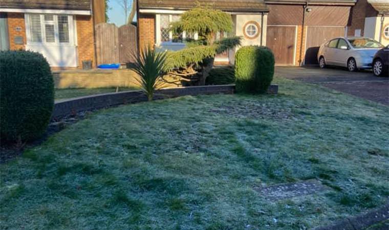 Front garden Orpington