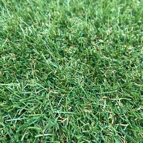 Fern 25 Artificial Grass