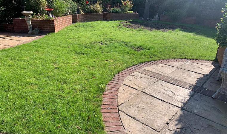 Grass lawn Bexleyheath