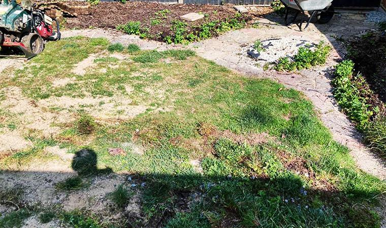 Existing garden Orpington