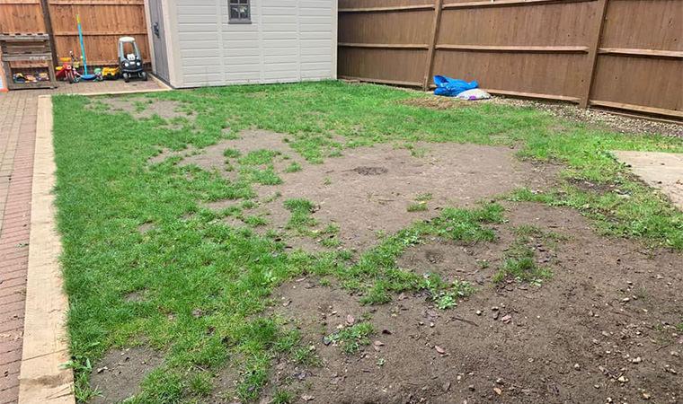 Original back garden space Orpington