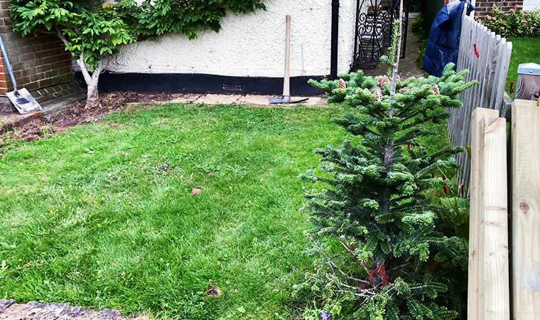 Small front garden Swanley