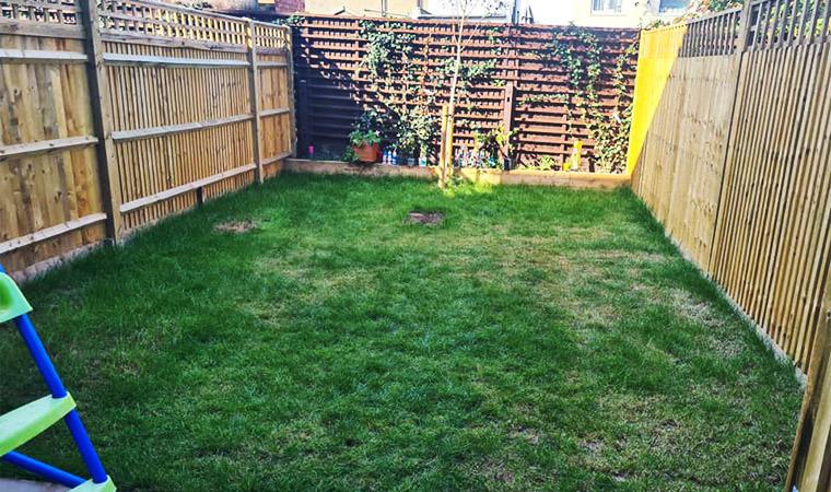 New build lawn
